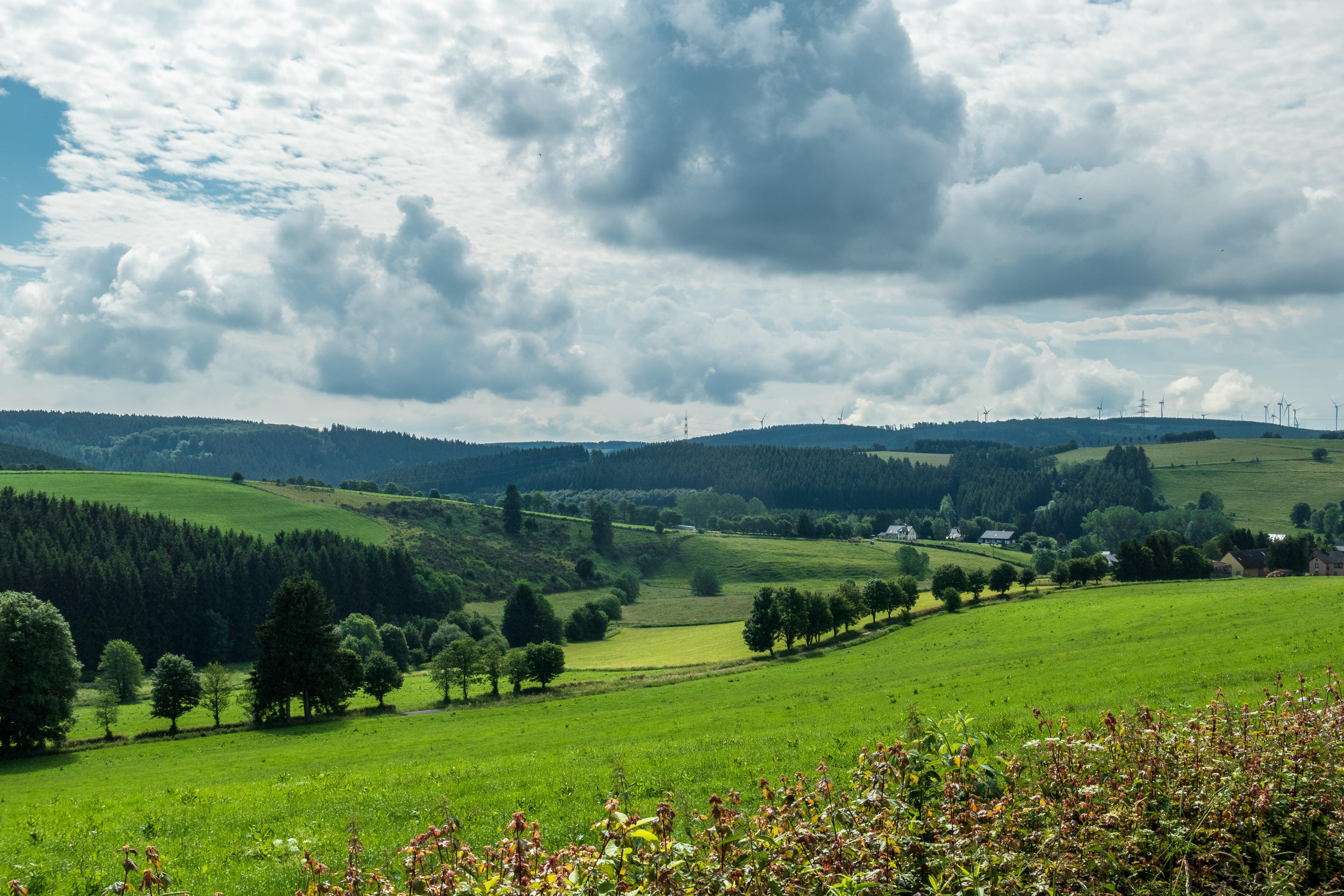 Scuderia Eifel